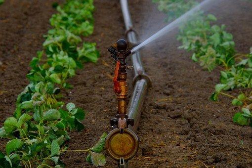 rain gun sprinkler in nigeria